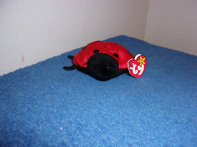 Ty Beanie Babies.lucky  D.o.b  May 1,1995..(Tush 1993)..error Retired..#388-E