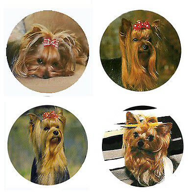 Yorkshire Terrier Magnets :4 Yorkies for your Fridge or Collection-A Great Gift