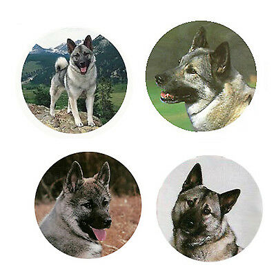 Norwegian Elkhound Magnets 4 Elkies for your Fridge or Collection-A Great Gift