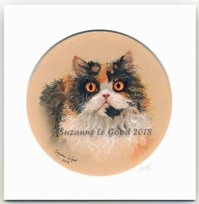 Selkirk Rex Cat art painting mounted original hand painted by Suzanne Le Good