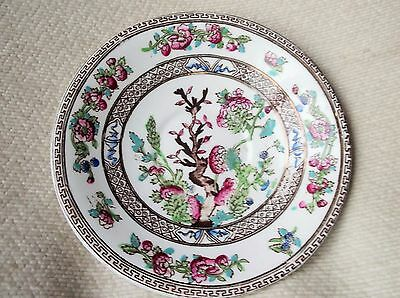 Rare Antique Saucer / Side Foley Art China Peacock Pottery Indian Tree 5.25""