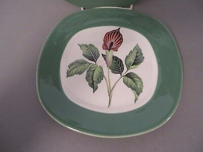 Luncheon Plate, TAYLOR SMITH TAYLOR USA, King O'Dell Conversation, 1952, Good