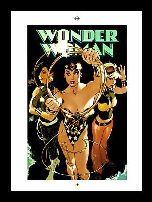 Adam Hughes Wonder Woman #186 Rare Production Art Cover Art