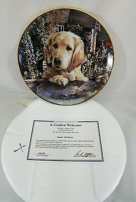 A Golden Welcome Danbury Mint Collectible Plate Retriever Dog by Mandie Haywood