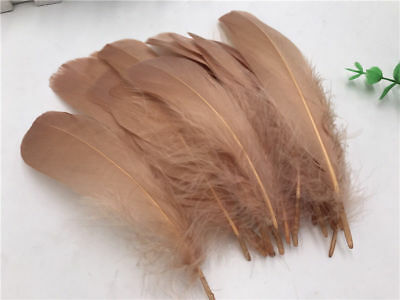 """FEATHERS 10 X Latte Goose Feathers 5"""" - 7"""", 12cm - 20cm. New Collection."""