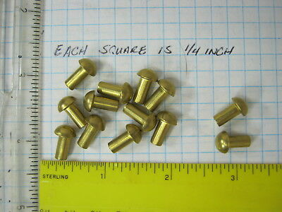 25 Solid brass 3/16 X 3/8 round head rivets SCA armor steampunk costume model