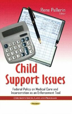 Child Support Issues (Childrens Issues Laws and Program) (Paperba...
