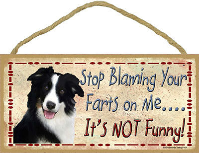 Border Collie Dog Stop Blaming Your Farts On Me Wood SIGN Plaque USA Made