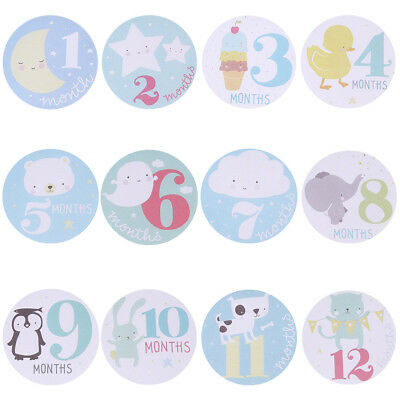 UN3F Baby Monthly Photograph Stickers Month 1-12 Milestone Stickers
