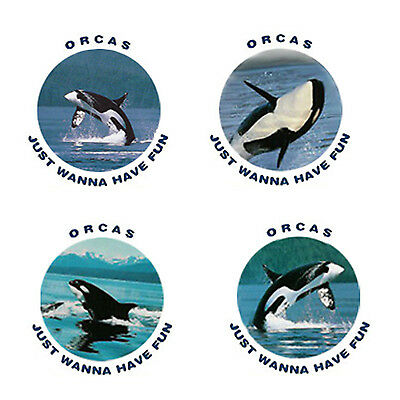 Orca Whale Magnets A: 4 Orcas for your Fridge or Collection-A Great Gift