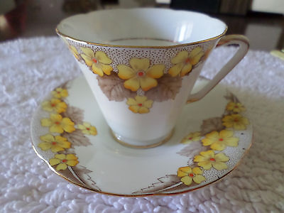 A.b. Jones Grafton Ashton Cup & Saucer