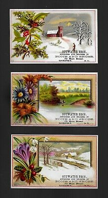 Charming Country Scenes W/ Floral Frames-3 Victorian Trade Cards-SALE
