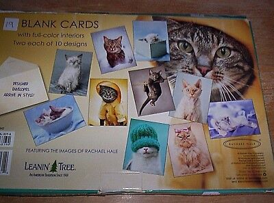 19 Kitten Cat  Blank Note Cards & Envelopes 10 Different Designs NIB