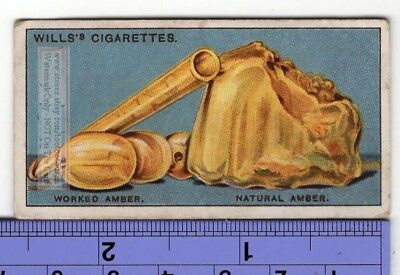 Amber Fossilized Tree Resin 90+ Y/O Trade Ad Card