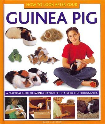 How to Look After Your Guinea Pig: A Practical Guide to Caring for Your Pet,...