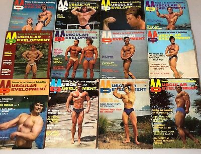 Lot Of 12 Muscular Development Magazines 1972 Entire Year (Water Damaged)