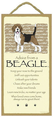 Advice From A  BEAGLE 10 x 5 Wood SIGN Plaque USA Made