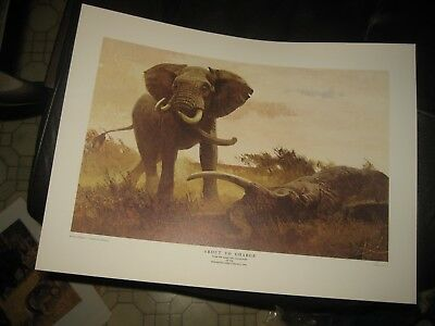 1970 Remington Game of the World AFRICAN ELEPHANT Art Print - Bob KUHN