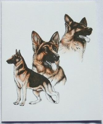 German Shepherd Dog Laura Rogers Pet Notes Notecard Set of 10