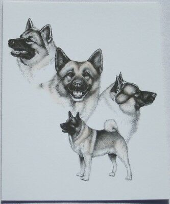 Norwegian Elkhound Dog Laura Rogers Pet Notes Notecard Set of 10