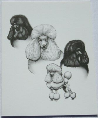 Poodle Dog Laura Rogers Pet Notes Notecard Set of 10