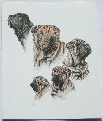 Shar Pei Dog Laura Rogers Pet Notes Notecard Set of 10