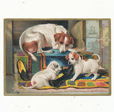 Misc 1109 Large Victoriaan Trade Card Soapine Soap  Dogs  5X7