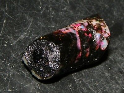 Indonesian Black Fossil Opal Rough 23.5cts Red Fires, Black Base Collectors