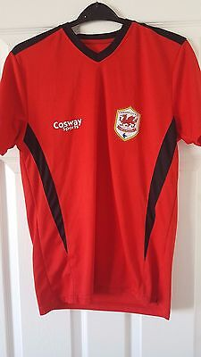 Mens Football Shirt - Cardiff City FC - Training 2014 - Cosway Sports - Red - S
