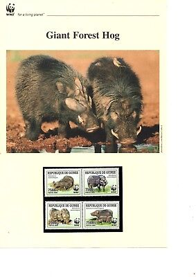 Guinea - 2009 WWF Giant Forest Hog MNH stamps and First Day Covers (W14)