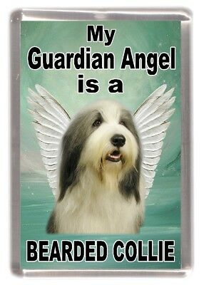 "Bearded Collie Dog Fridge Magnet ""My Guardian Angel is a ....."" by Starprint"