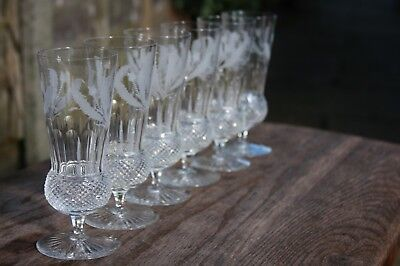 Six Edinburgh Crystal Thistle Champagne Flute /glass First Quality & Signed