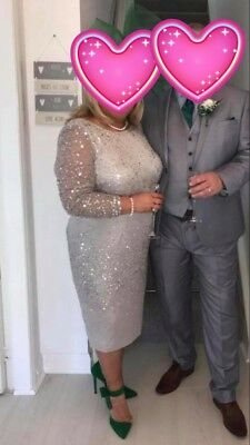 Mother Of The Bride Silver Size 16 Dress Sequin