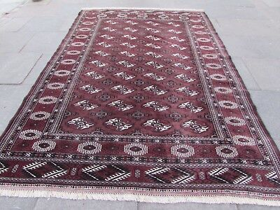 Old Traditional Hand Made Persian Turkoman Oriental Wool Brown Carpet 307x213cm