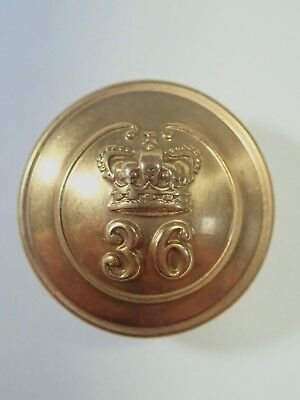 36th (Herefordshire) Foot original Large Victorian Officers Button.