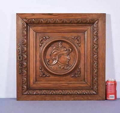 *French Antique Renaissance Architectural Panel Door Solid Oak Wood w/Soldier 1