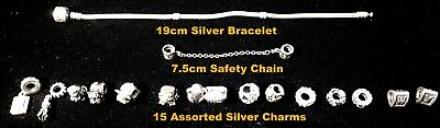 Pandora ale Charm Bracelet 19cm Silver 925 S with 15 Charms + safety Chain