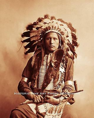SIOUX INDIAN CHIEF AMERICAN HORSE VINTAGE PHOTO NATIVE AMERICAN 1880 8x10 #21691