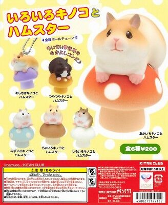 Kitan Club Capsule Animal Various Mushrooms & Hamster Swing Completed Set 6pcs