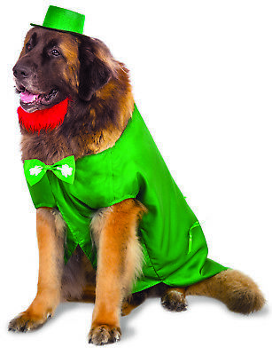 Big Dogs Leprechaun Saint Patricks Day Pet Green Costume