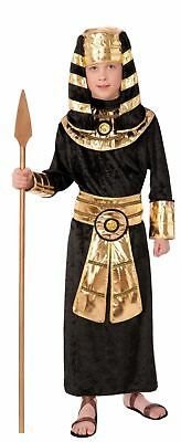 Egyptian Pharaoh King Tut Nile Halloween Child Boys Costume Robe & Headpiece