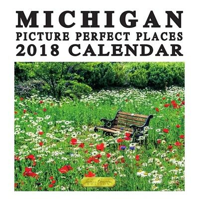 2018 Michigan Picture Perfect Places Wall Calendar,  Michigan by TF Publishing