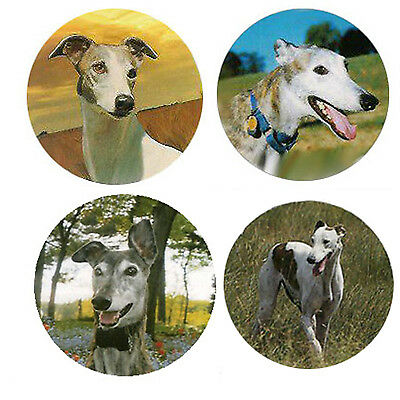 Greyhound Magnets:4 Cool Greyhounds for your Fridge or Collection-A Great Gift