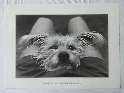 "Plakat Photo Poster - Kent Reno 1990 - ""Bonnie and me"" - Yorkshire Terrier"