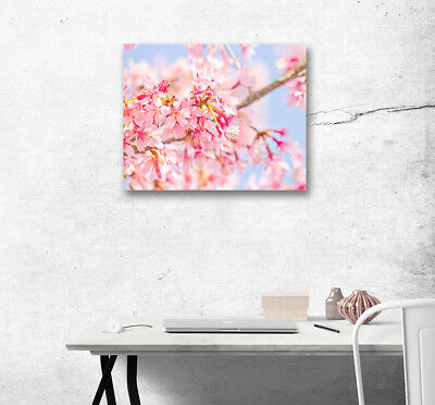 Pink Spring Flower Bloom Modern Wall Art Poster Print Home Decor Canvas Painting