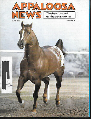 Appaloosa News Horse Magazine June 1982 Equine Breed Journal