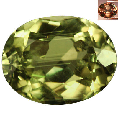 3.18 Ct Superb Oval Cut 10 x 8 mm  AAA Color Change Turkish Diaspore
