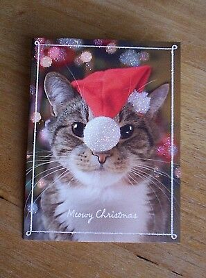 12 MEOWY CHRISTMAS  Tabby Santa Cat Christmas Cards