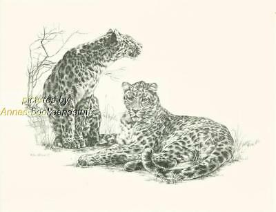 #152 two (2) LEOPARDS wild life art print done by Jan Jellins * pen & ink