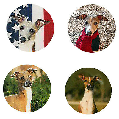 Italian Greyhound Magnets: 4 Cool ITs for your Fridge or Collection-A Great Gift